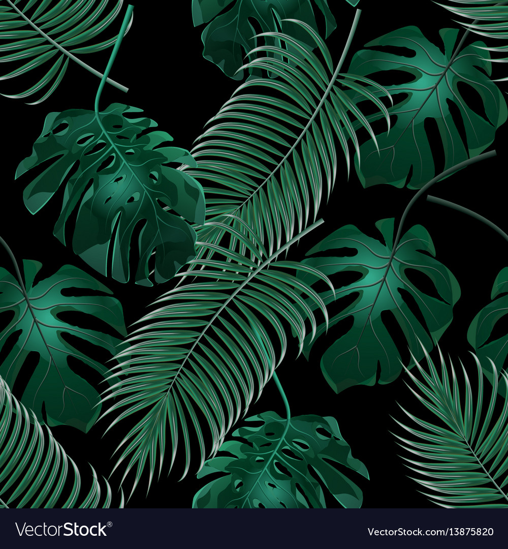 Green tropical palm leaves and monstera jungle