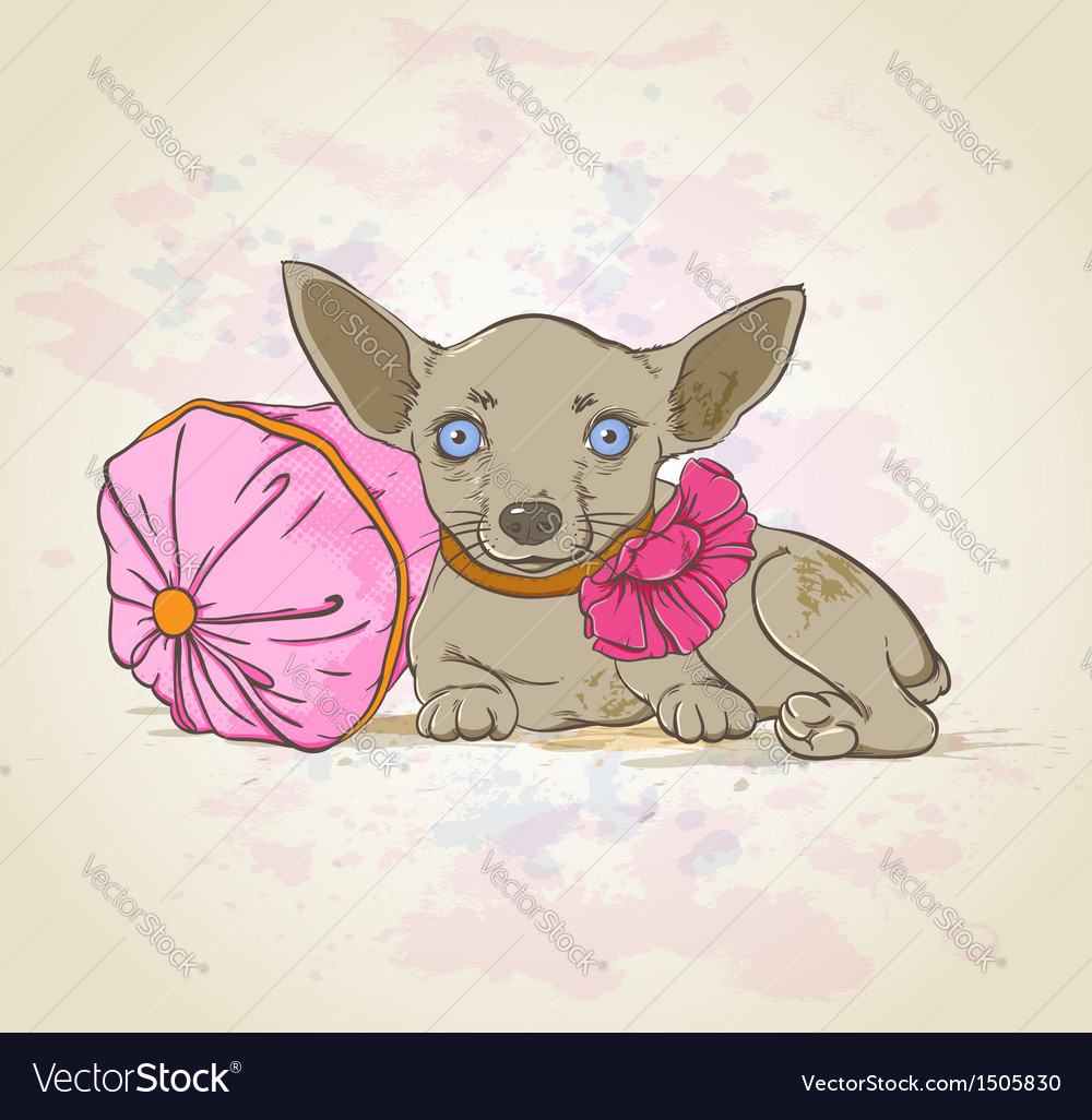 Dog on pillow vector image