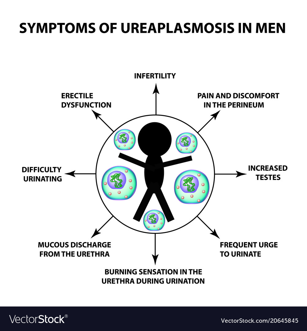 Ureaplasma