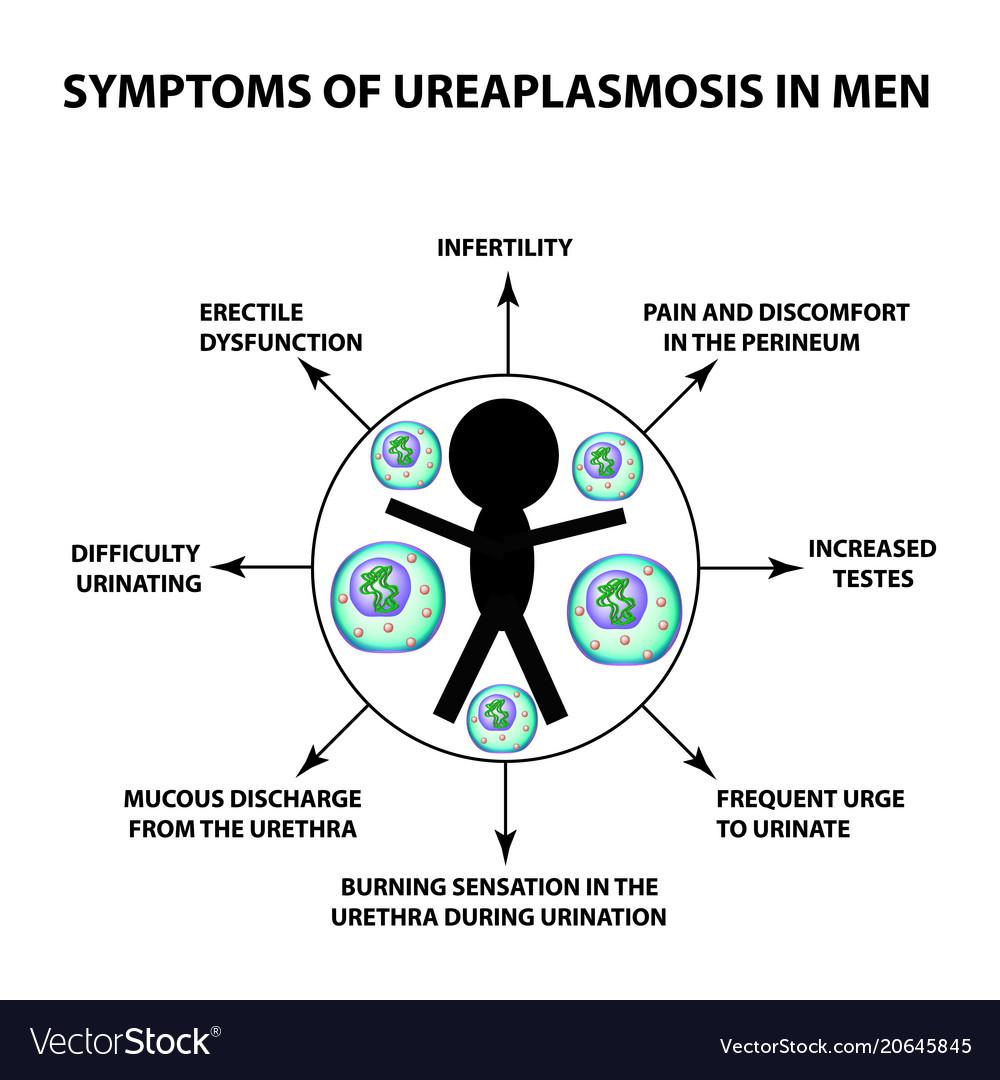 Cauta? i Ureaplasma Man.