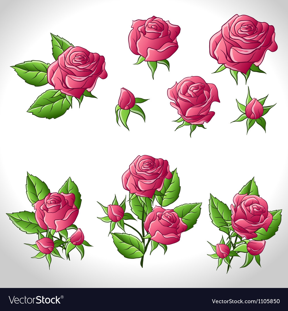 Big set of a beautiful colored roses royalty free vector big set of a beautiful colored roses vector image izmirmasajfo