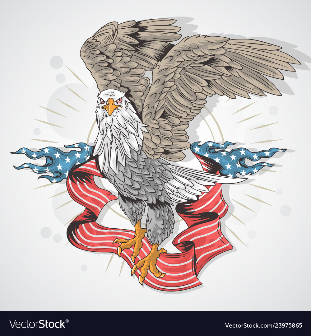 Eagle hawk usa flag detail