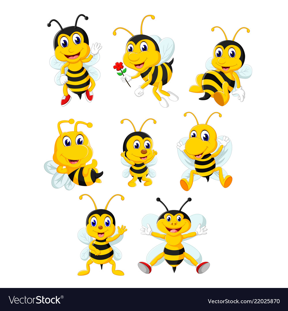 Collection of the yellow bee