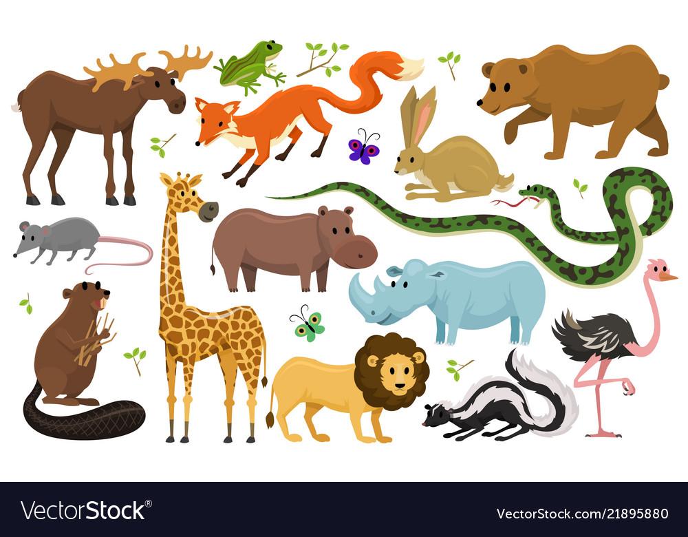 Cute animals for baby wild giraffe moose camel