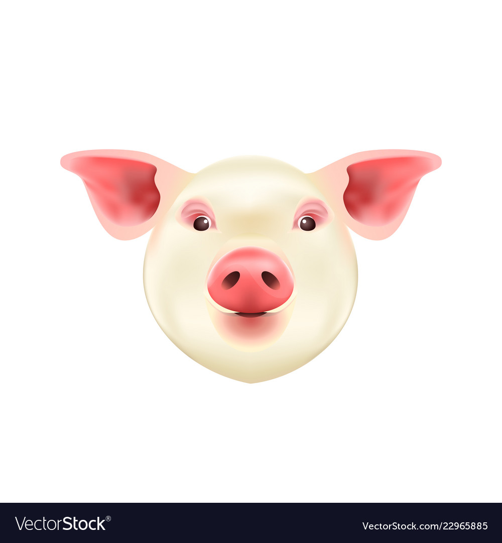 Pig head isolated on white background symbol of