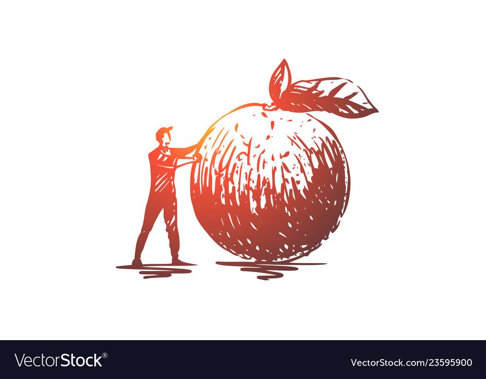 Apple food fruit fresh organic concept hand