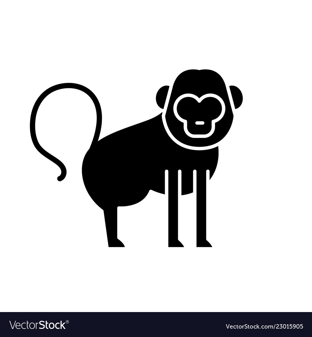 Baboon black icon sign on isolated