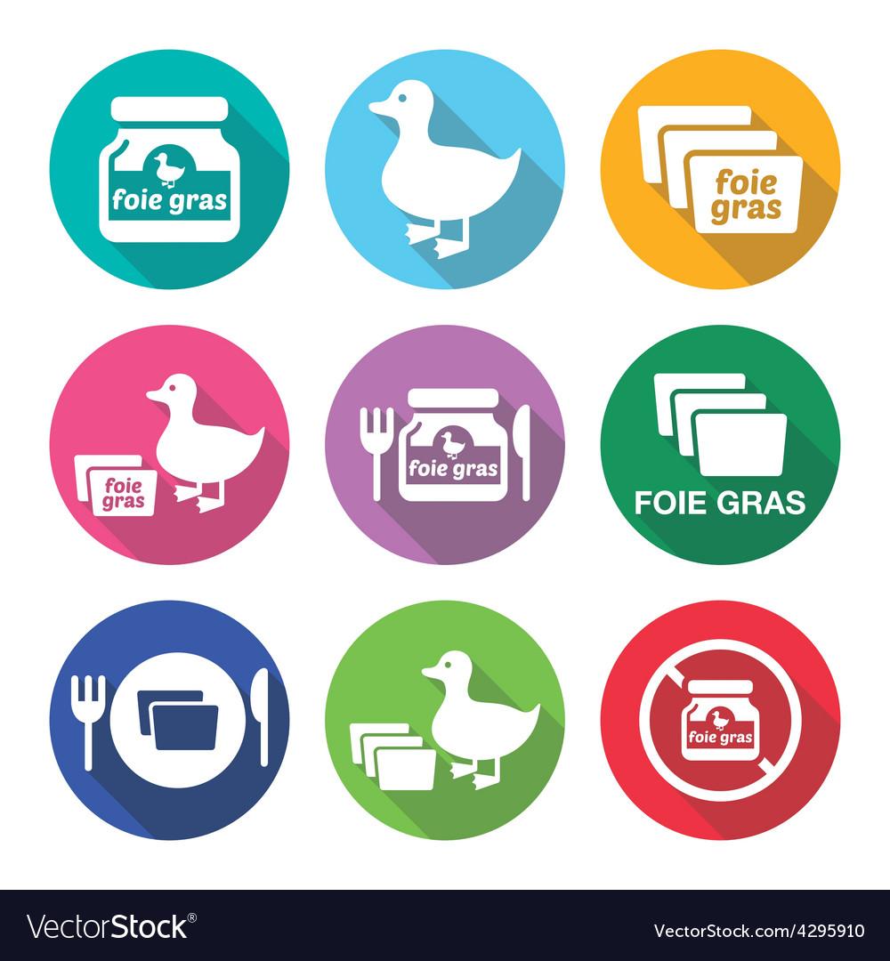 Foie gras duck or goose flat design icons set