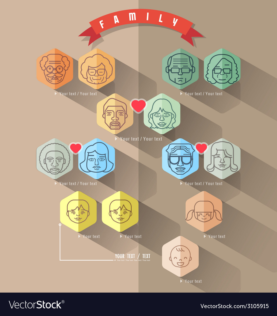 family tree template info graphics vector image