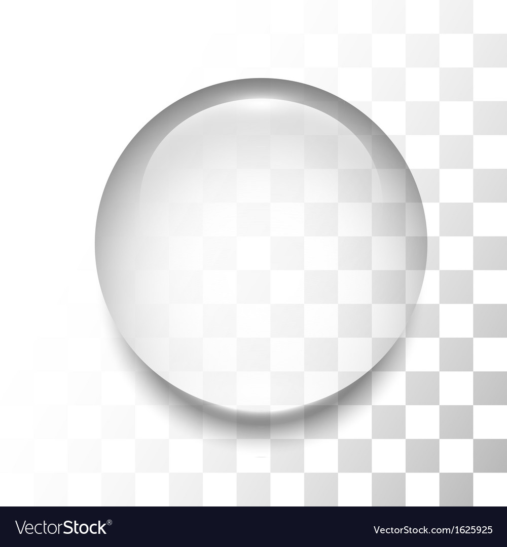 Transparent drop with shadow and reflection vector image
