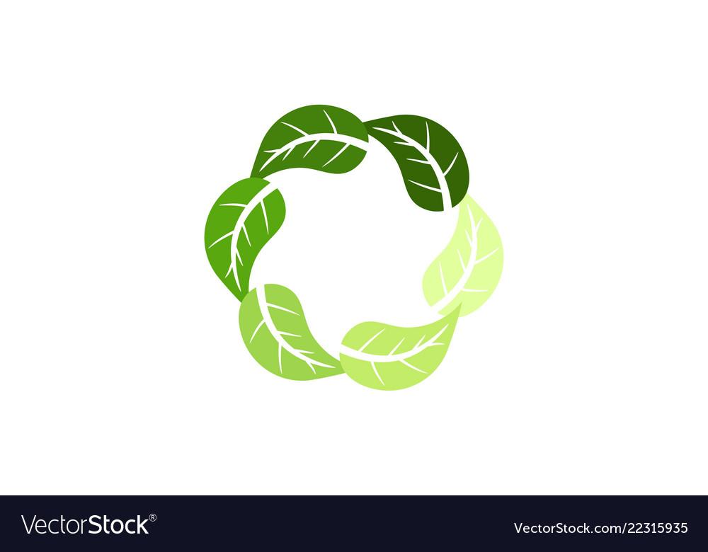 Organic leaf circle logo designs inspiration