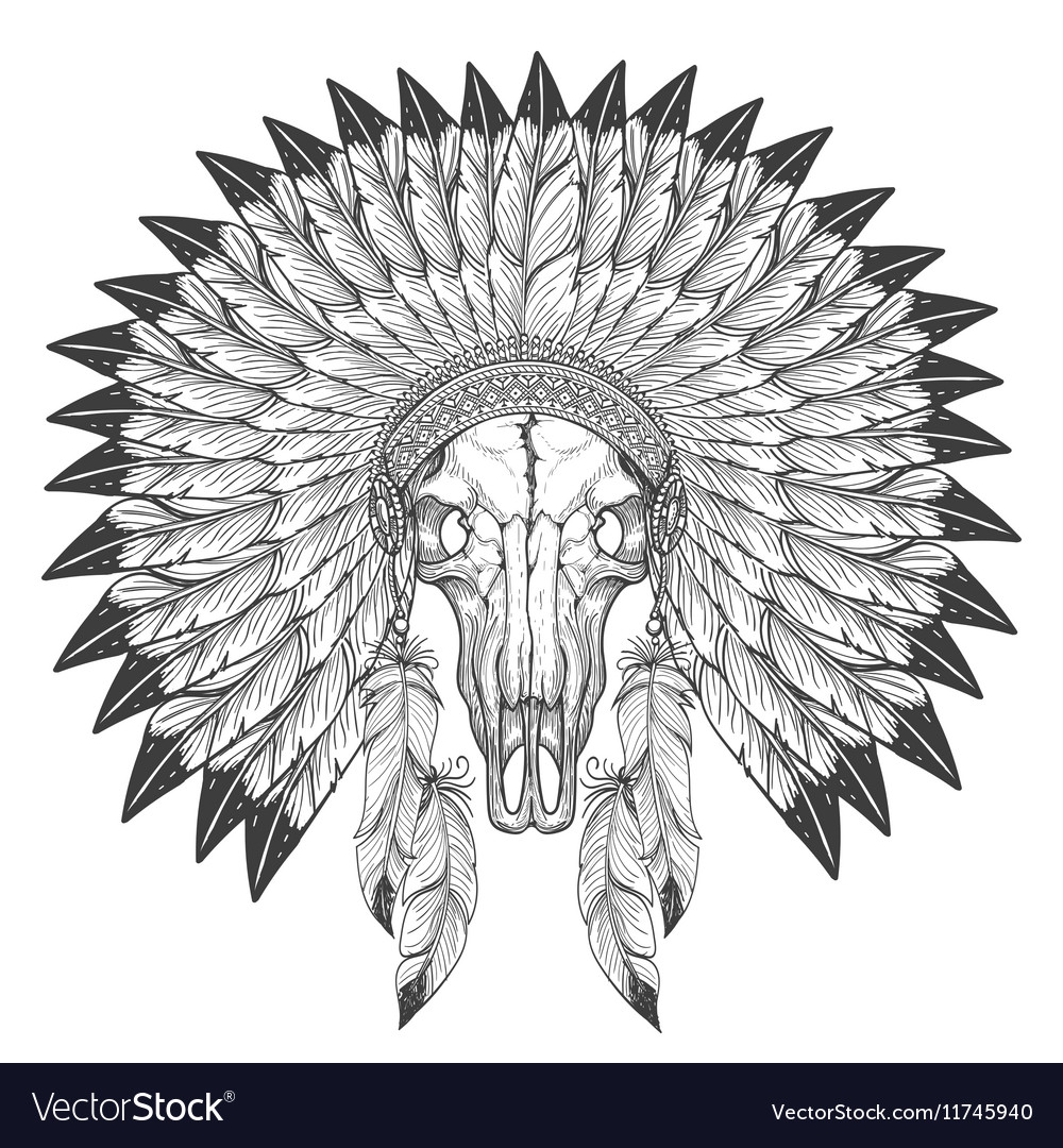 Buffalo skull sketch with feather headdress