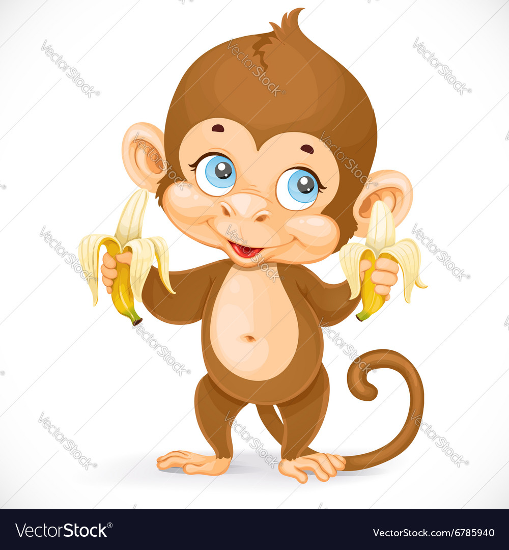 Cute baby monkey with two bananas stand on a white