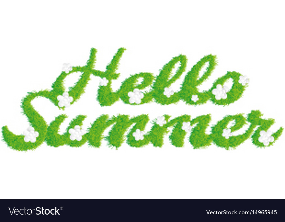 Greeting of the summer season lettering with the vector image