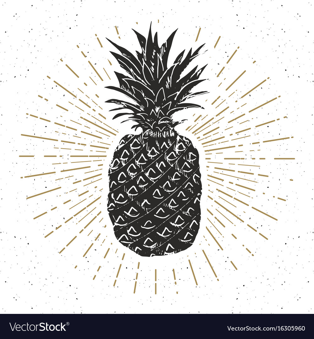 Vintage label hand drawn pineapple grunge