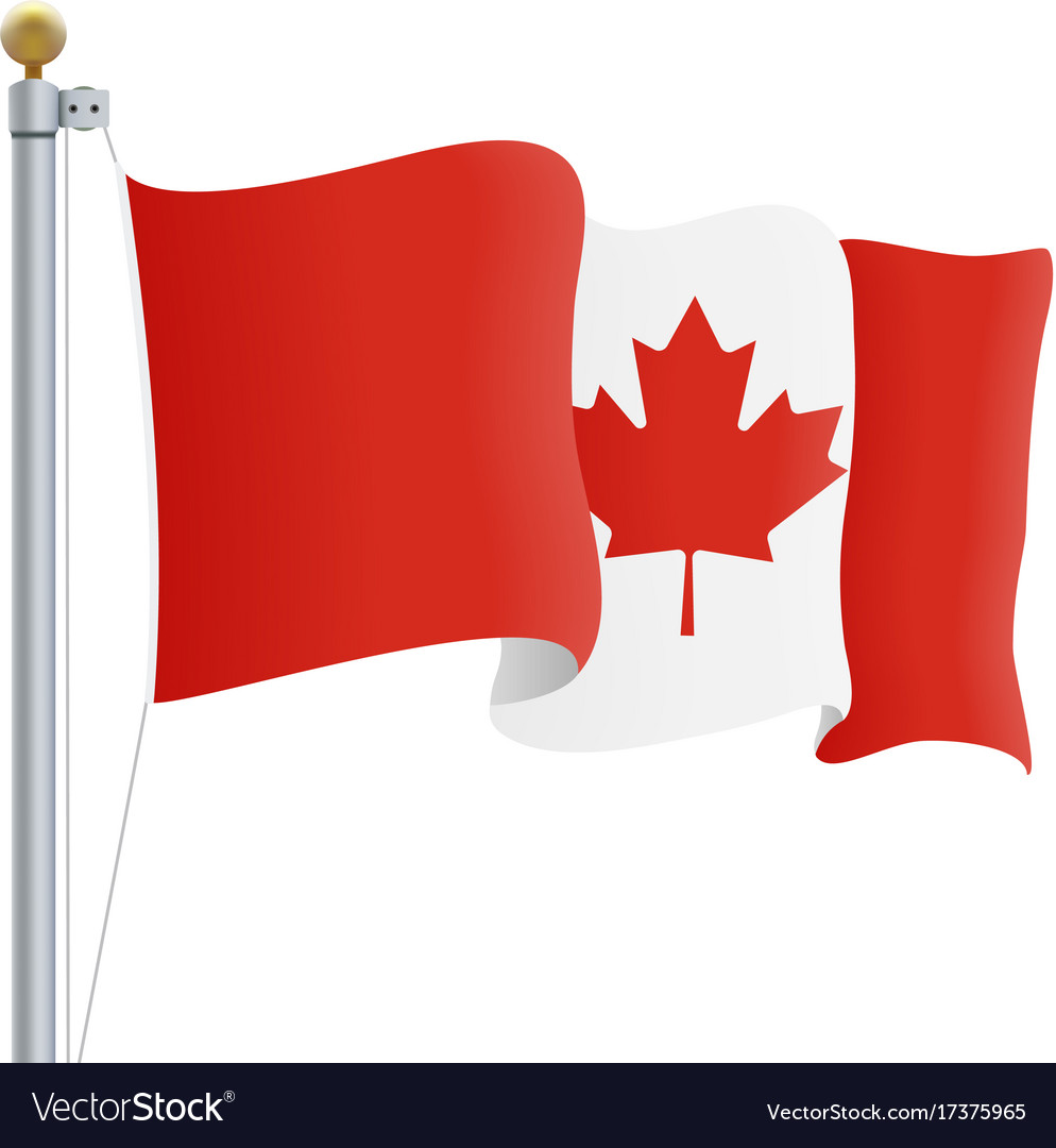 Waving canada flag isolated on a white background