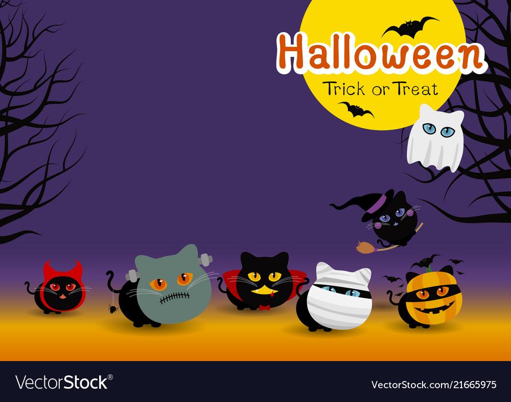 Halloween cats costume banner design