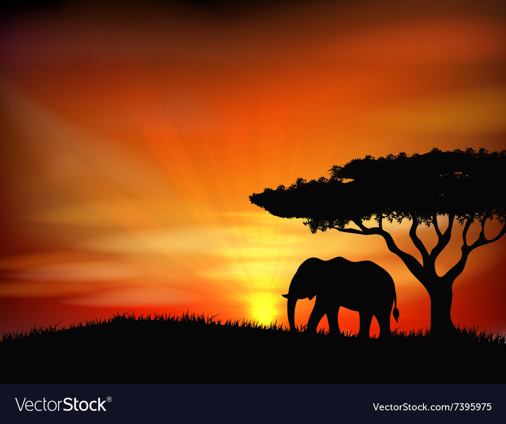 Sunset Background With Animal Elephant Royalty Free Vector