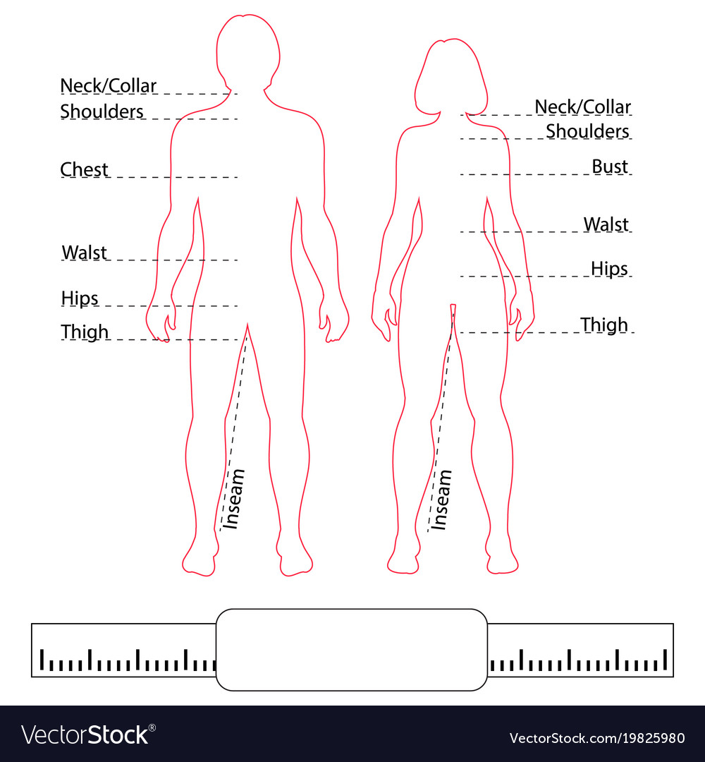 Man Woman Contour Bodies Pointers And Body Parts Vector Image