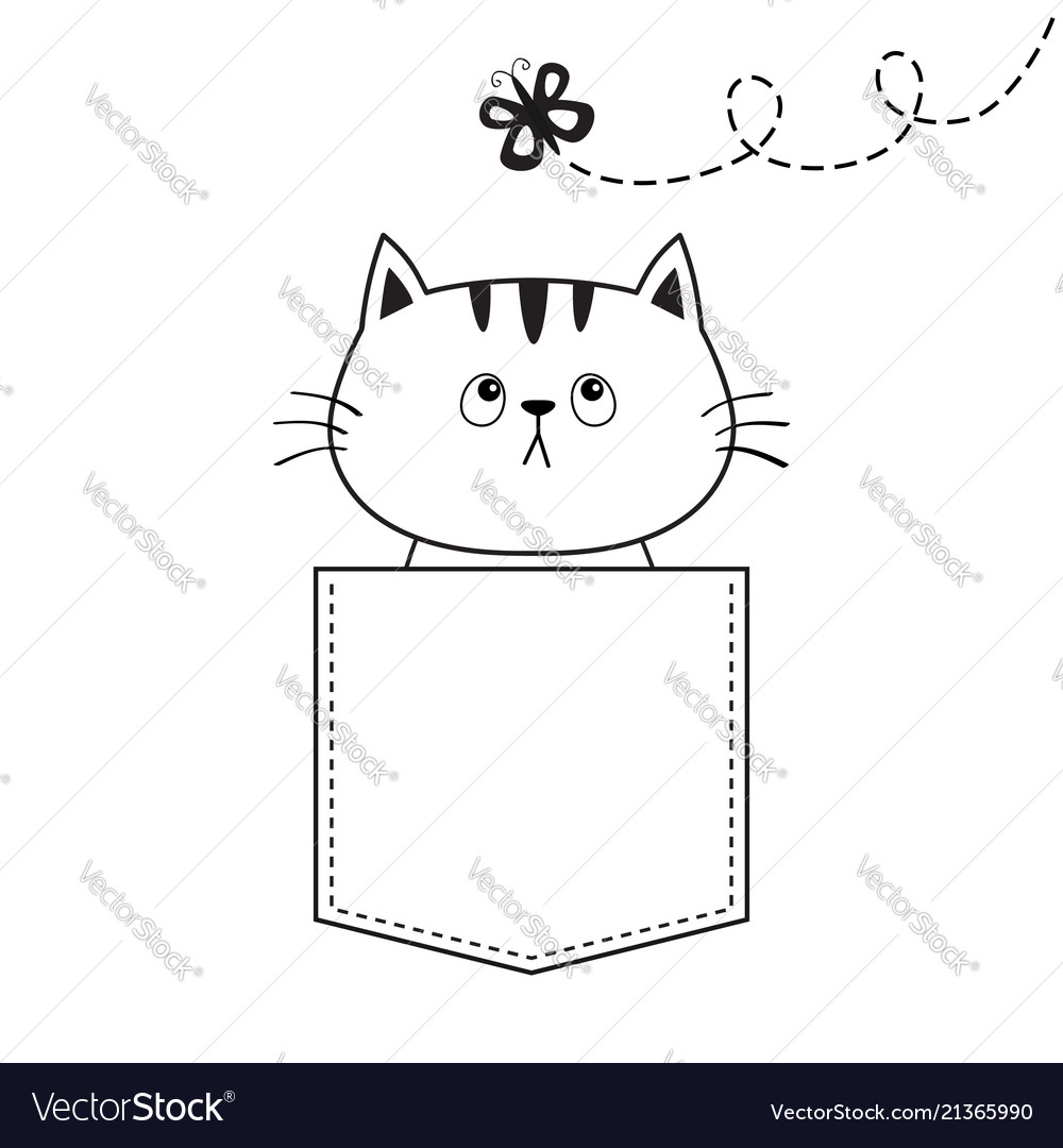 Cat in the pocket flying butterfly doodle linear