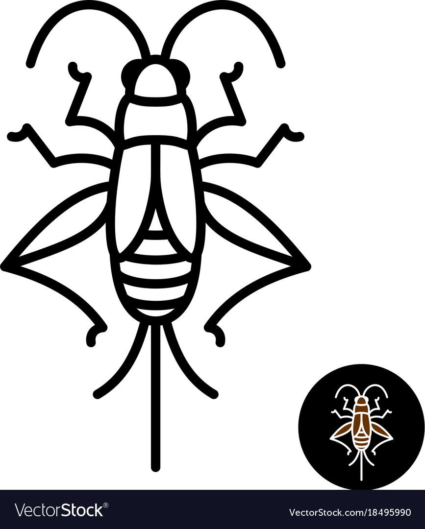 Cricket insect stylized logo