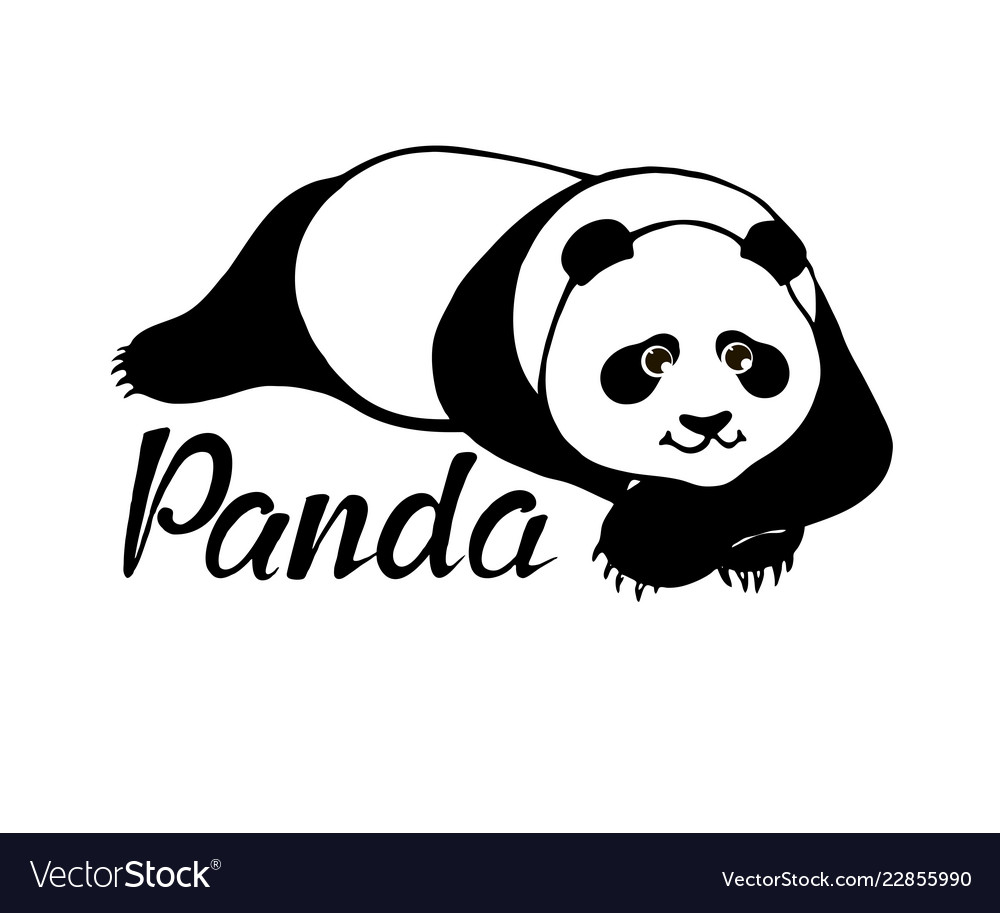 Cute panda bear lying - original hand drawn