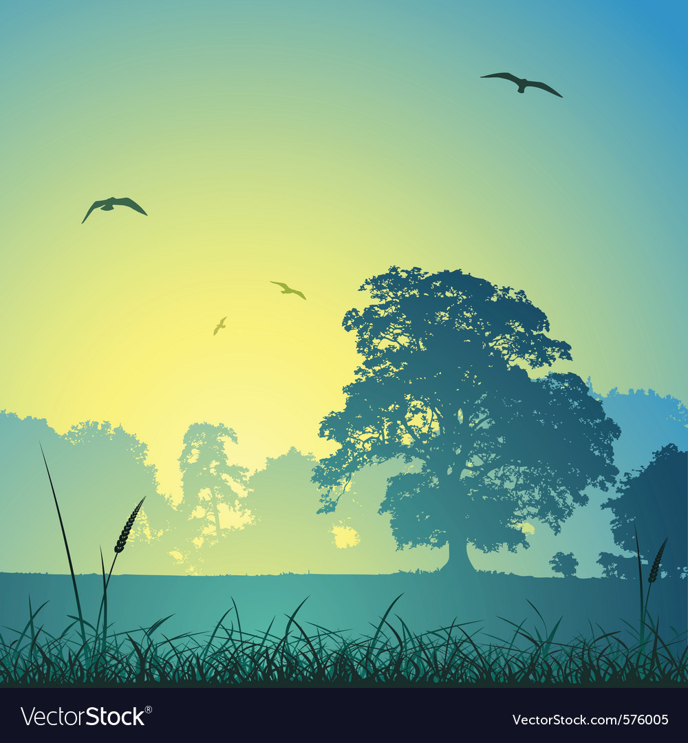 Country meadow landscape vector image