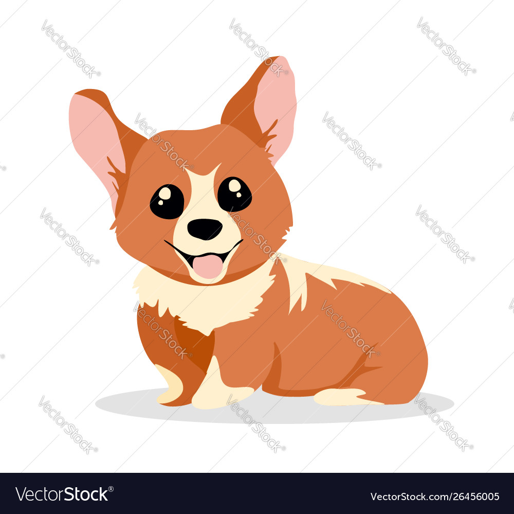 Cute and happy corgi dog