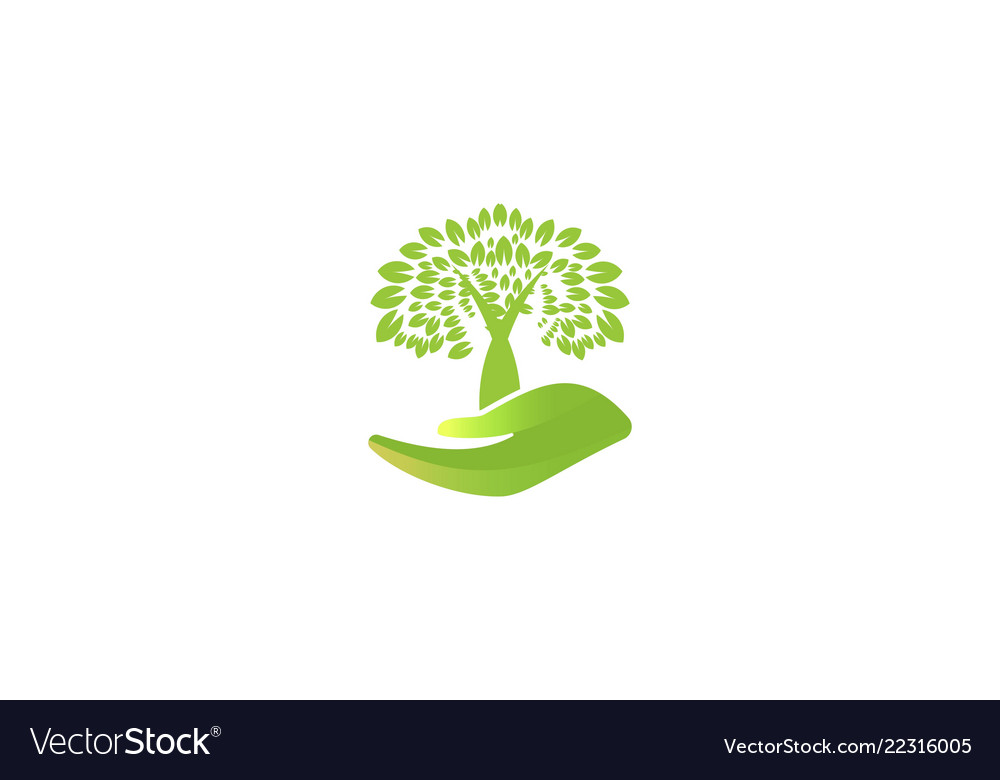 Tree care logo designs inspiration isolated on