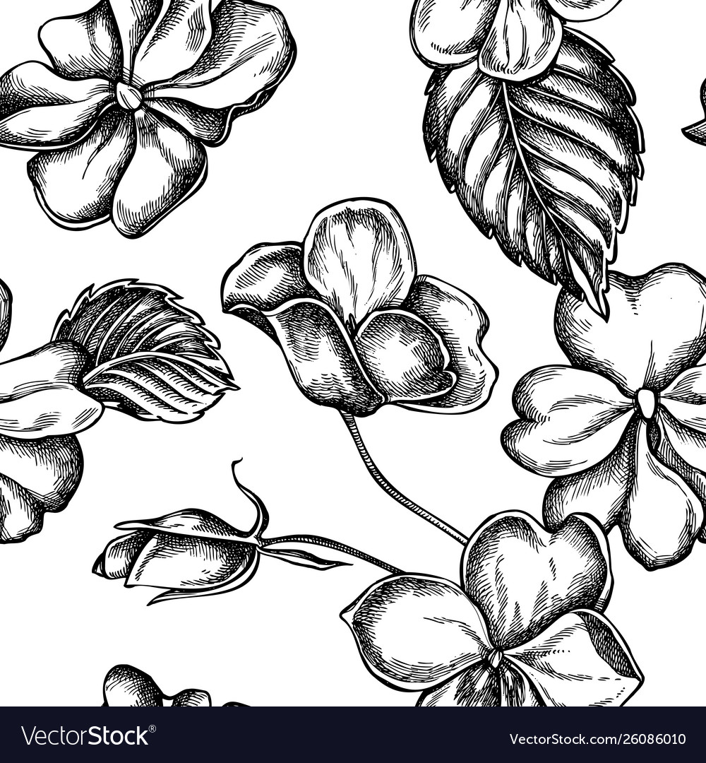 Seamless pattern with black and white impatiens