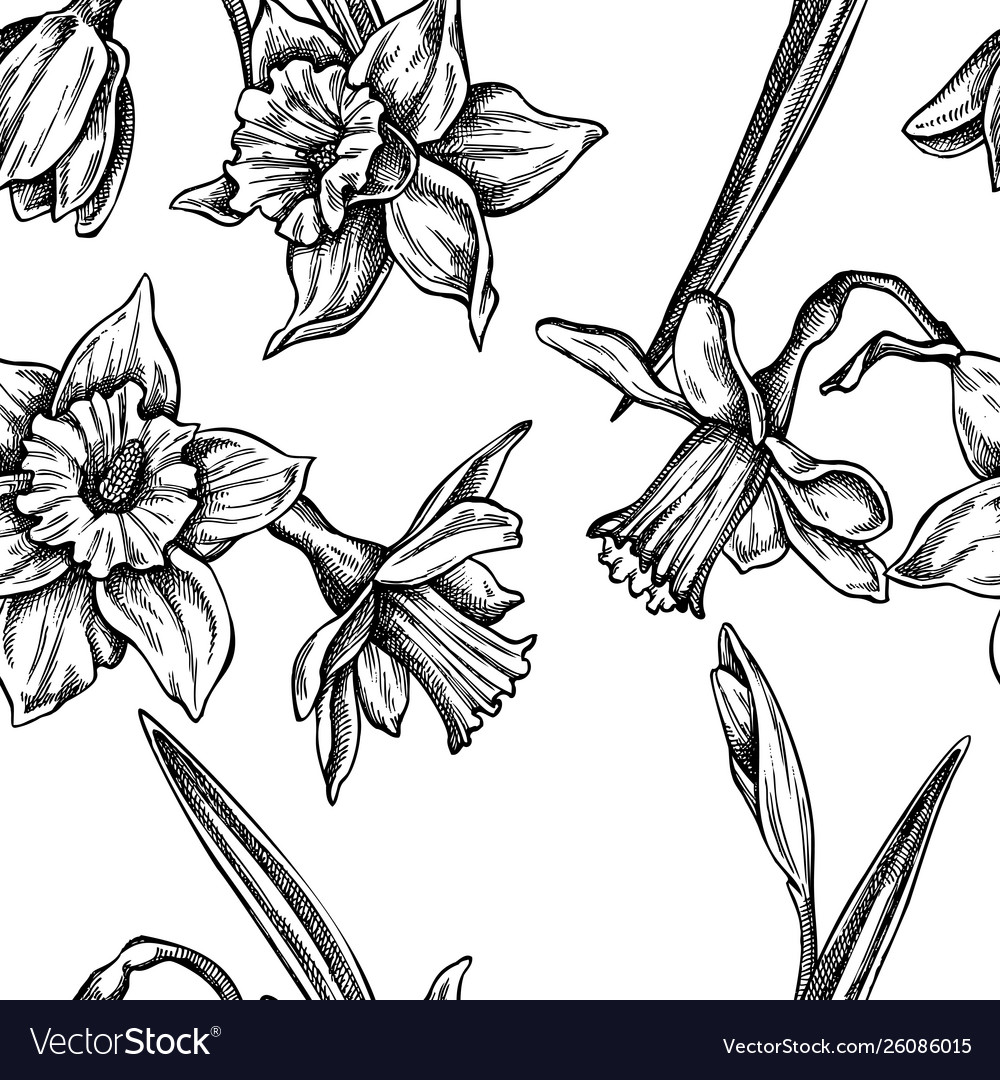 Seamless pattern with black and white daffodil