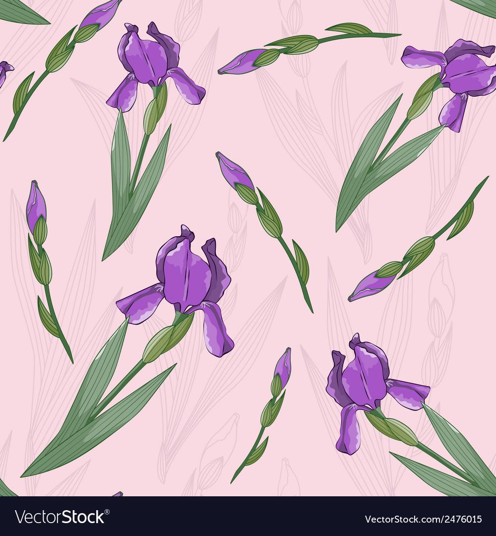 Seamless pattern with irises flowers