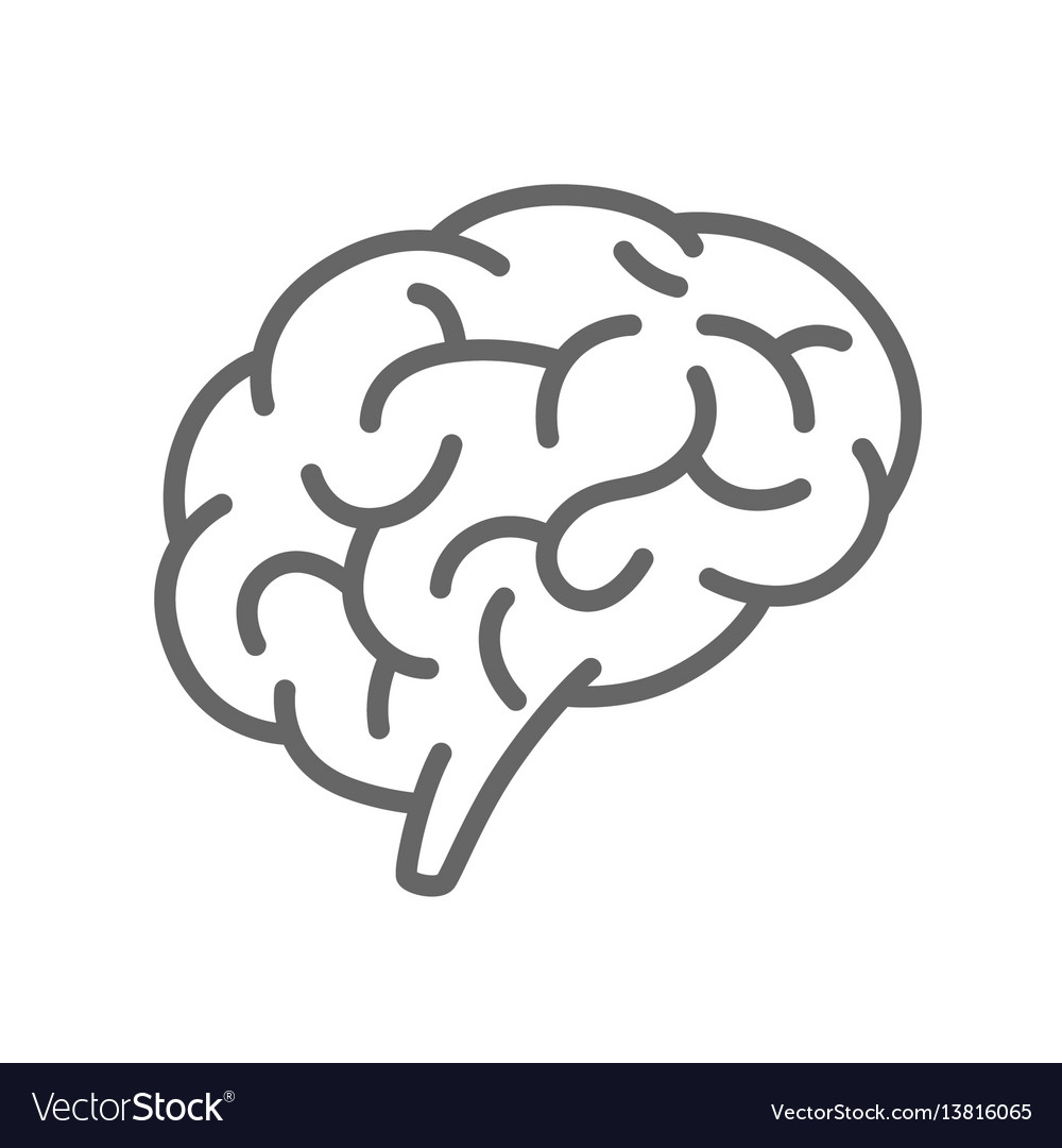 Silhouette brain on a white background