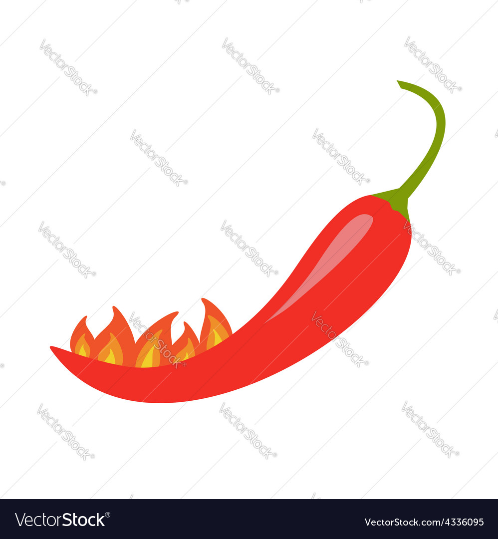 Hot Red Chili Jalapeno Pepper with fire Isolated