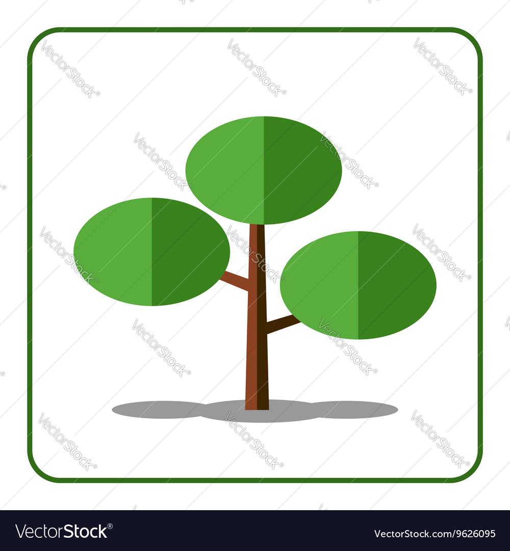 Pine fir tree icon vector image