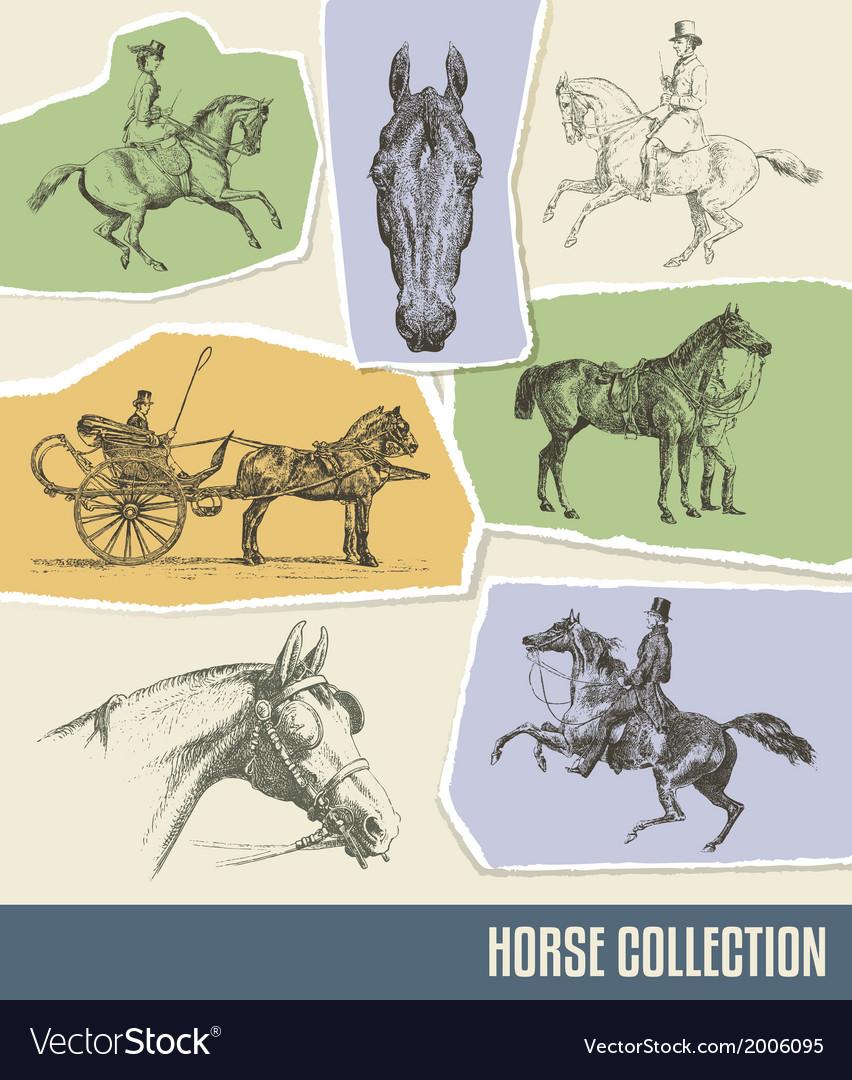 Vintage Horse Set
