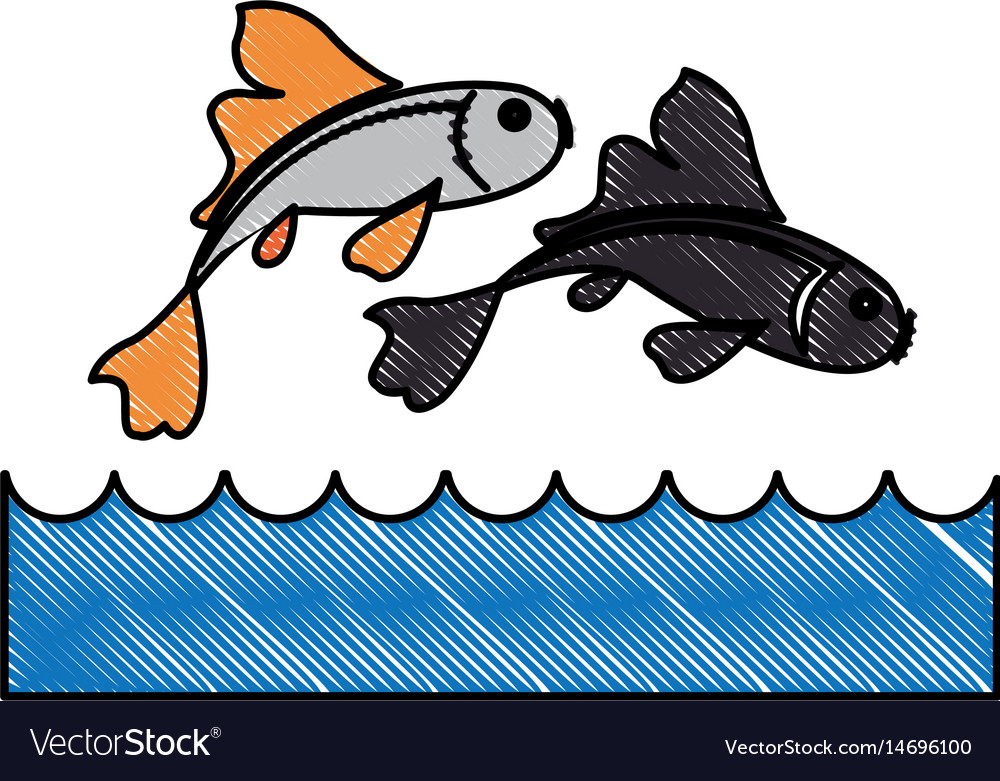 Drawing fish koi chinese animal asian decorative vector image