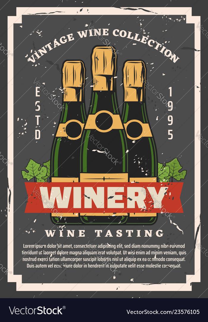 Brut grape wine in bottles winery