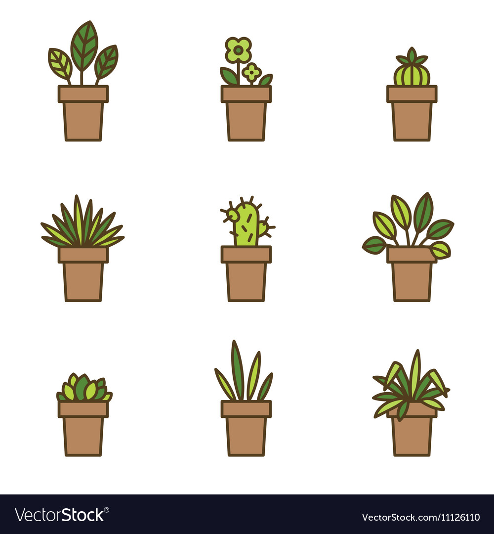 House plants in flowerpots Set of flat line icons