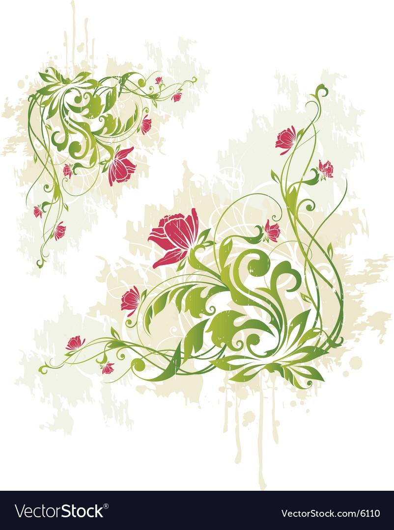 Rose Vine Graphic Royalty Free Vector Image Vectorstock