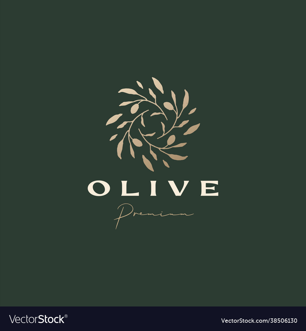 Olive branch sophisticated aesthetic logo icon