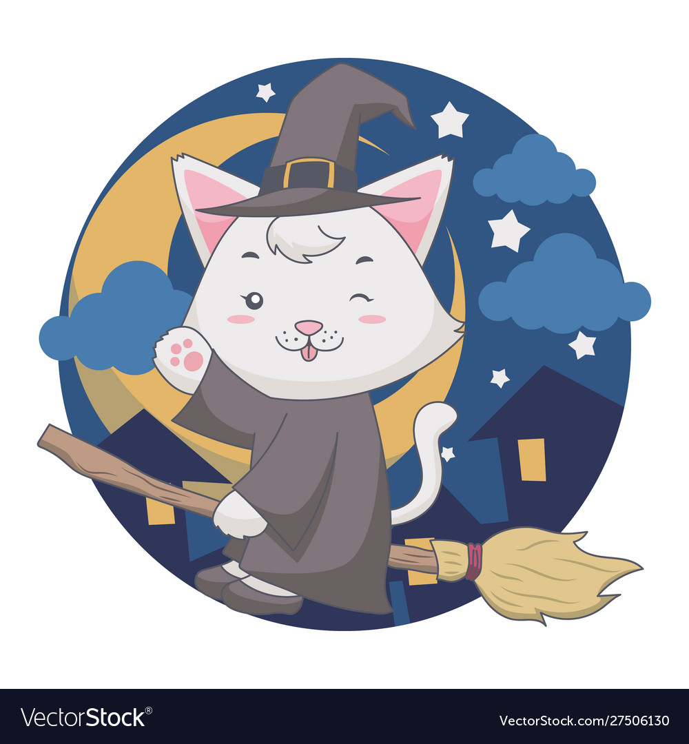 The flying wizard white cat uses a broom in the