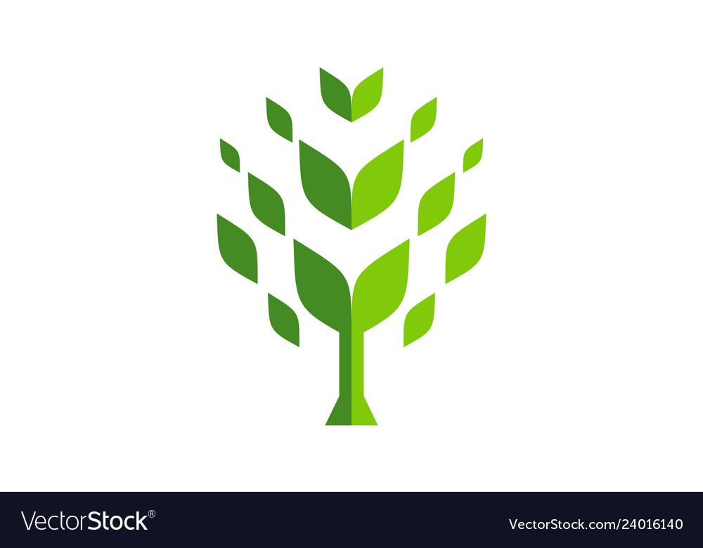 Abstract tree logo icon green concept