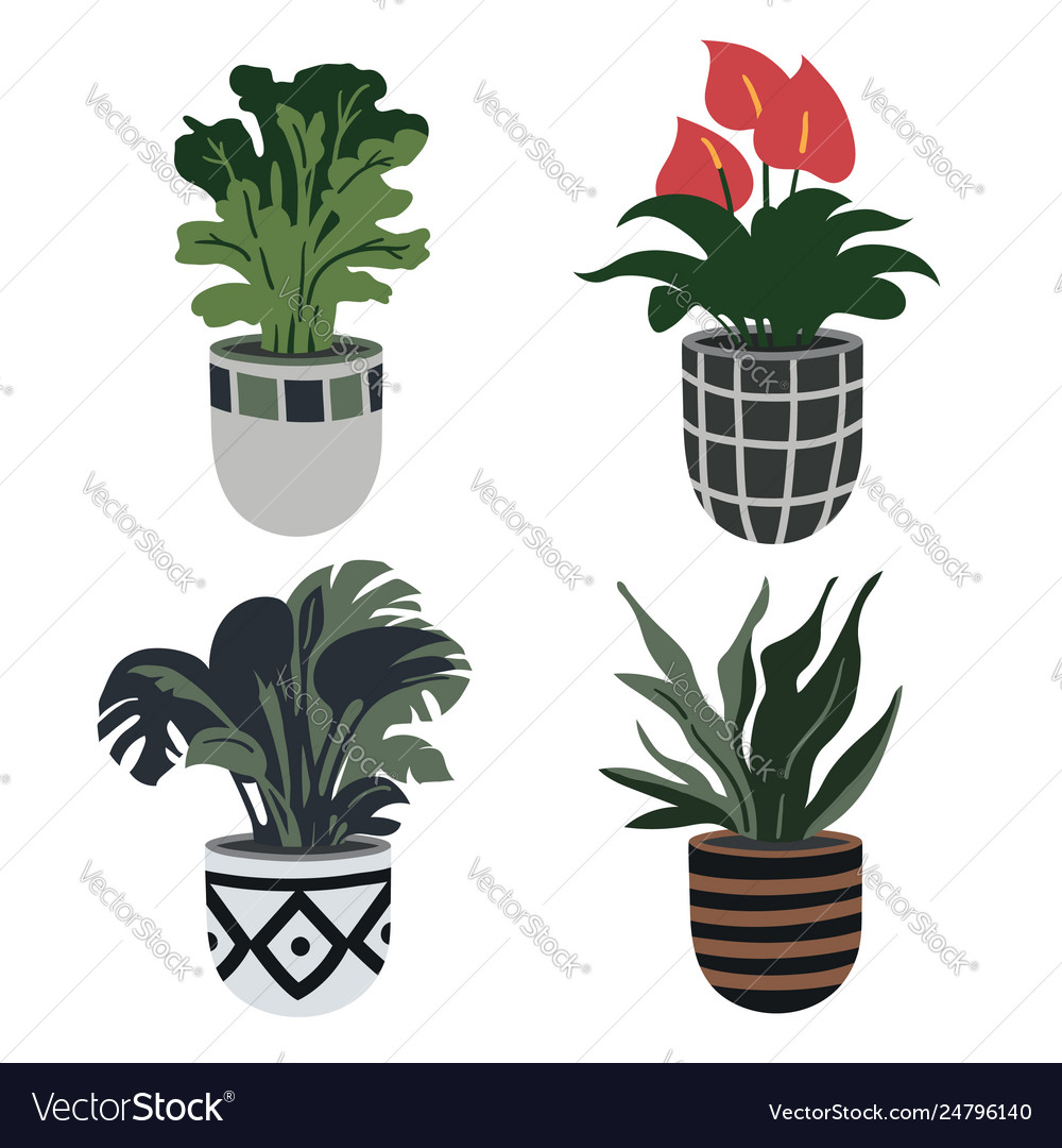 Hand drawn flower pots home garden collection