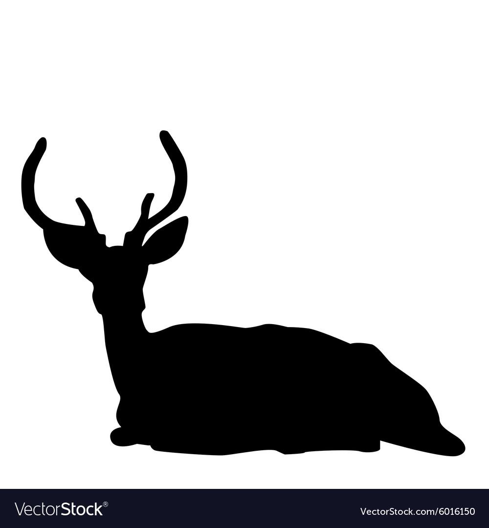 Deer stag silhouette vector image