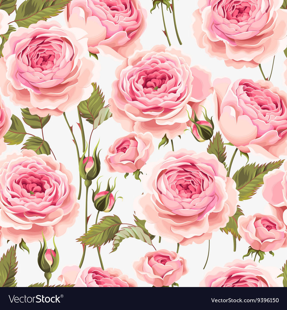 English Roses Seamless Royalty Free Vector Image