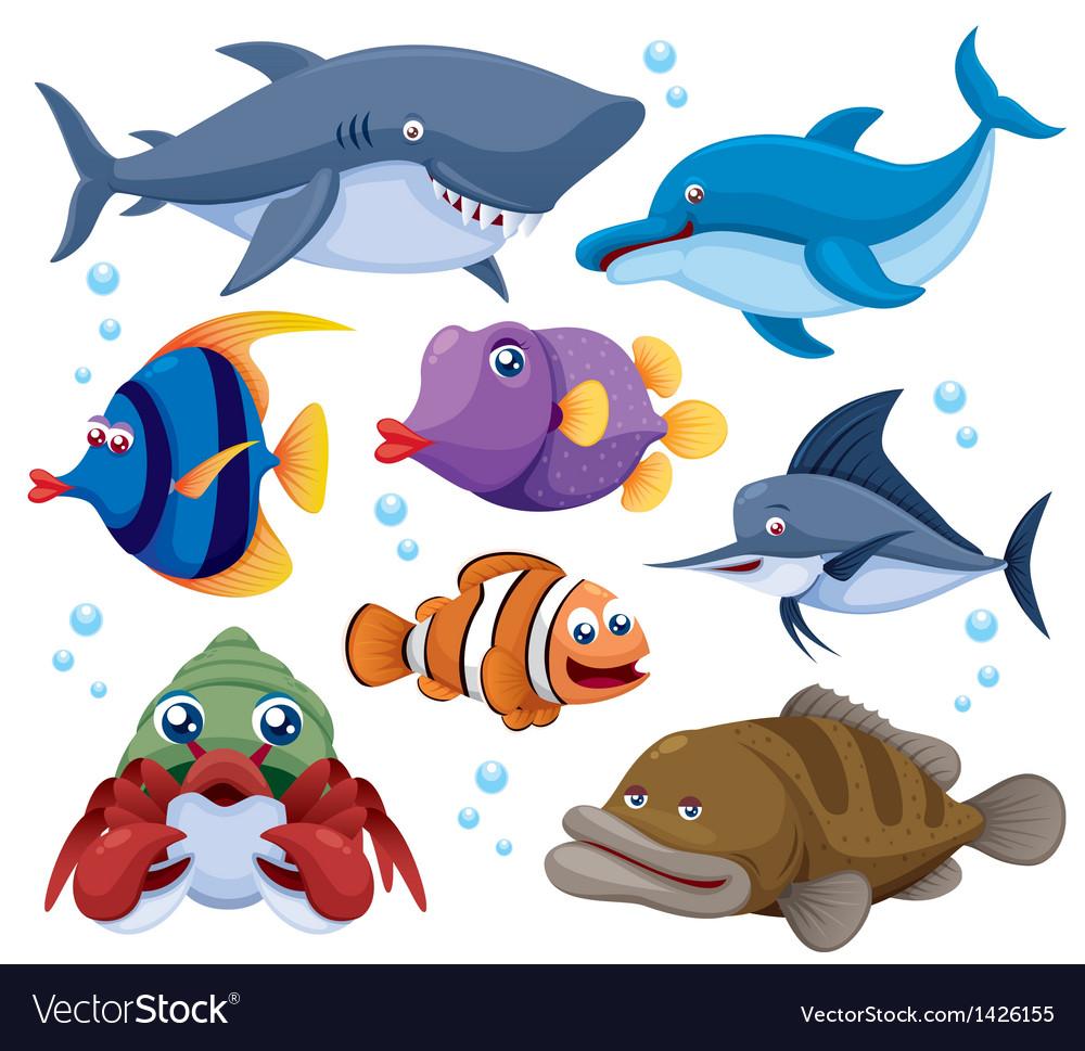 Fish sea set vector image