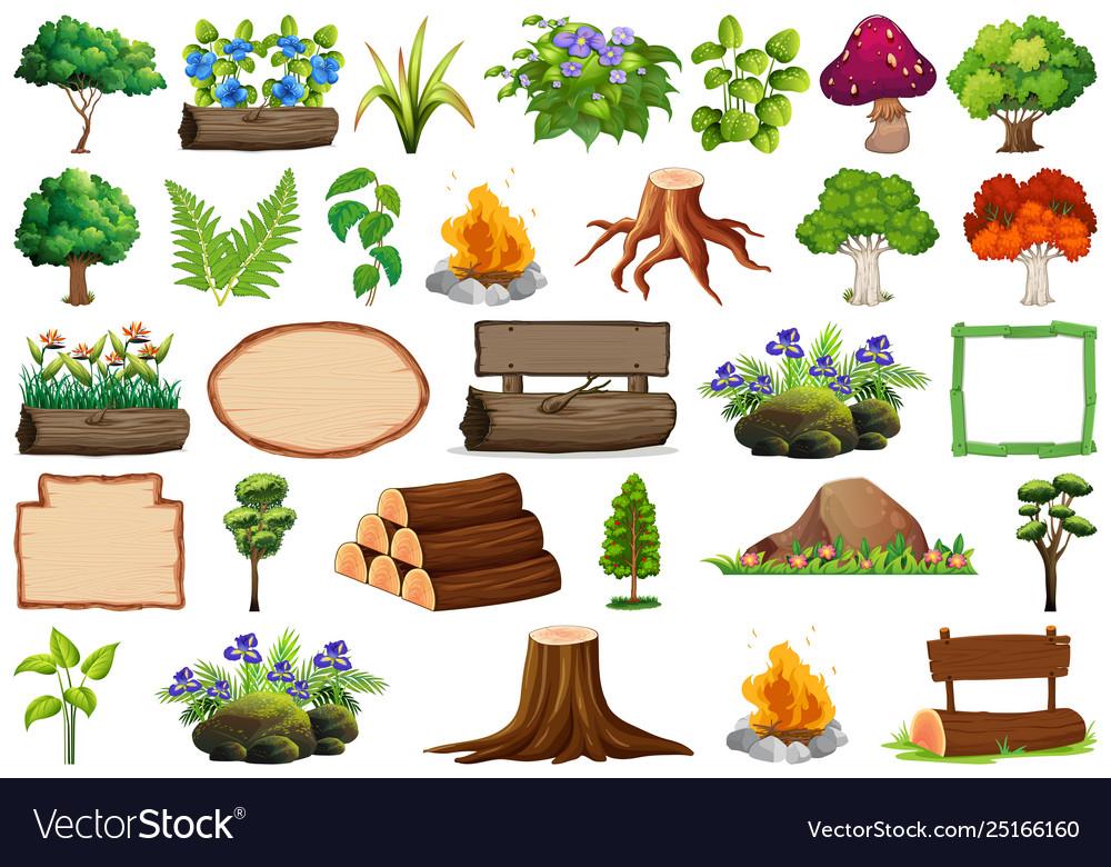 Set ornamental plants