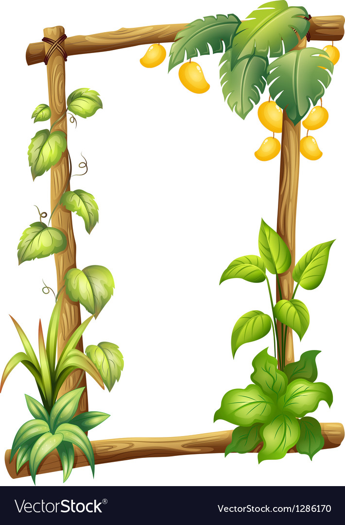 A frame made of wood with mangoes Royalty Free Vector Image