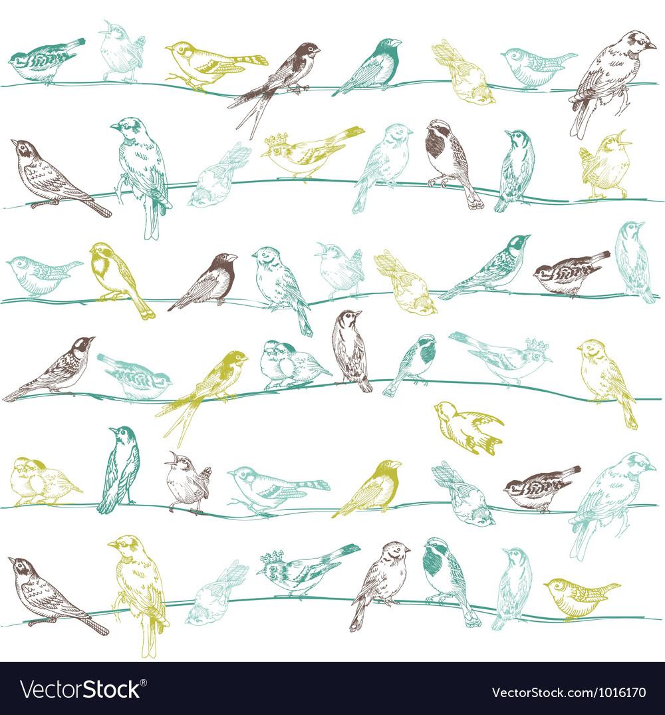 Birds Seamless Background vector image